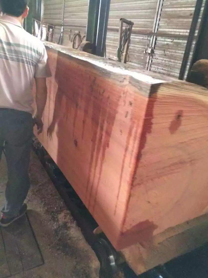 沙比利原木材料