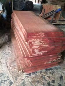 沙比利原木材料3