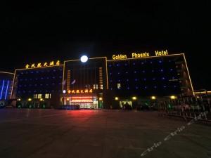 4:酒店工程案例:《金凤凰大酒店》定做高档烤漆实木门